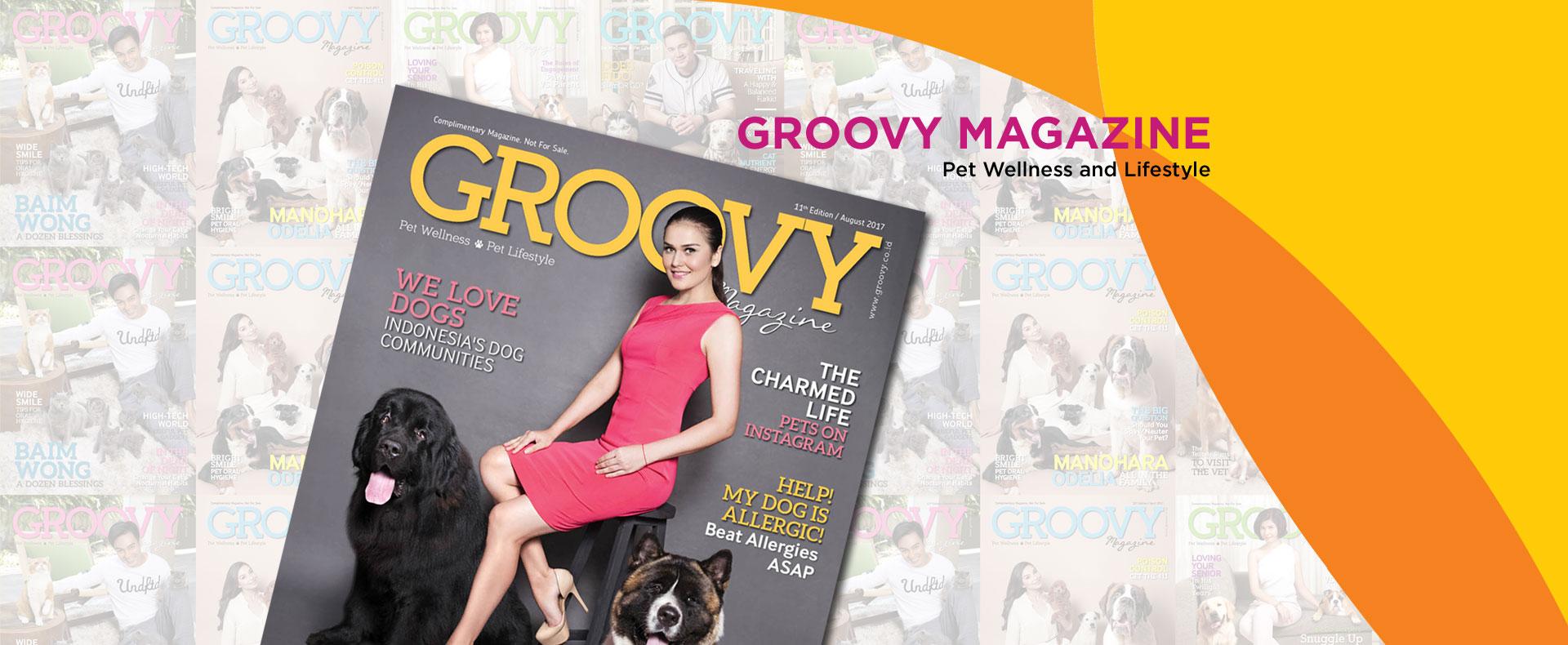 groovy magazine